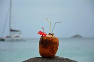 wie-schmeckt-kokoswasser-2